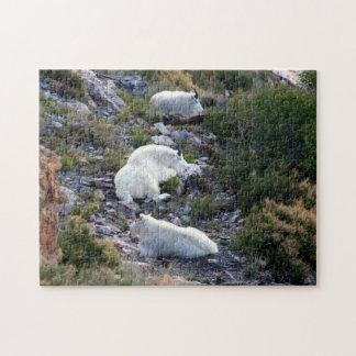 Cabras de montaña rocosa rompecabeza con fotos