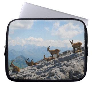 Cabras de montaña salvajes del cabra montés alpino mangas computadora