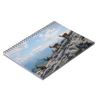 Cabras de montaña salvajes del cabra montés alpino libro de apuntes con espiral