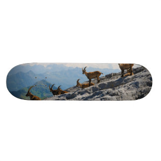 Cabras de montaña salvajes del cabra montés alpino patín personalizado