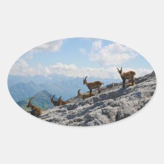 Cabras de montaña salvajes del cabra montés alpino pegatinas de óval