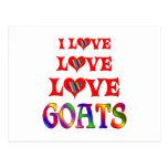 Cabras del amor del amor postales
