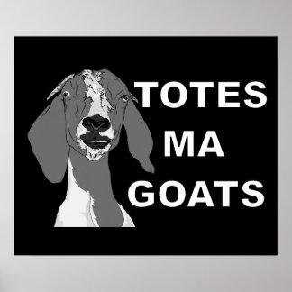 Cabras del mA de los totes Póster