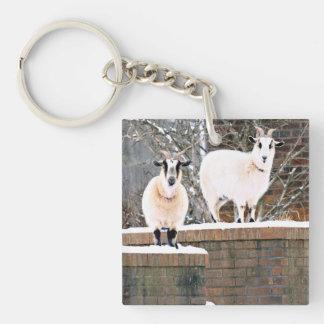 Cabras del navidad llavero cuadrado acrílico a doble cara