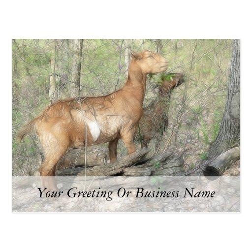 Cabras en el trabajo tarjetas postales