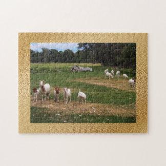 Cabras en fila puzzle con fotos