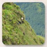Cabras en una ladera muy escarpada posavasos de bebidas