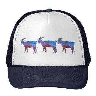 Cabras lavadas color gorros