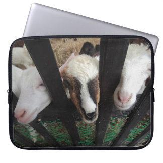 Cabras para su ordenador portátil fundas portátiles