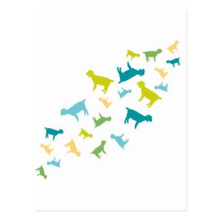 Cabras que caen tarjetas postales