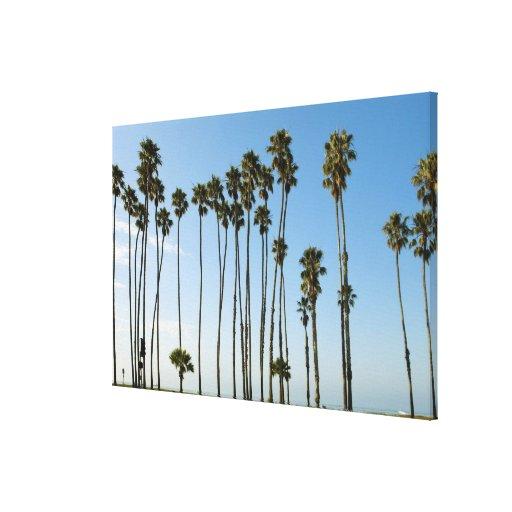 Cabrillo Avenue, Santa Barbara, California Canvas Print