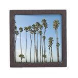 Cabrillo Avenue, Santa Barbara, California Gift Box