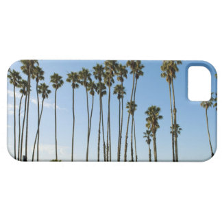 Cabrillo Avenue, Santa Barbara, California iPhone SE/5/5s Case