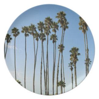 Cabrillo Avenue, Santa Barbara, California Melamine Plate