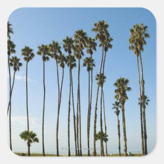 Cabrillo Avenue, Santa Barbara, California Square Sticker