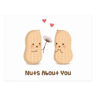 Cacahuetes lindos Nuts sobre usted humor del amor Tarjeta Postal