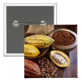 Cacao pod containing cacao beans which are 2 inch square button
