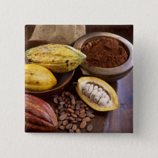 Cacao pod containing cacao beans which are pinback button
