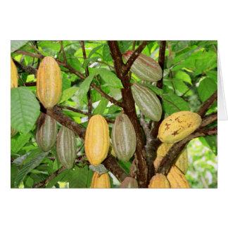 Cacao Tarjeta De Felicitación