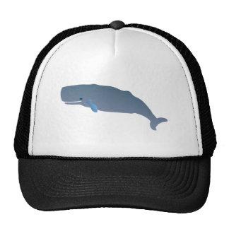 Cachalote sperm whale gorros