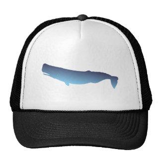 Cachalote sperm whale gorro