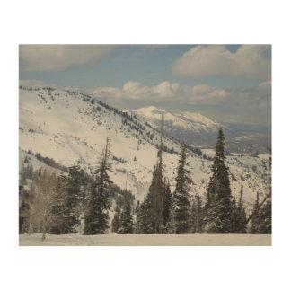 Cache Valley In Utah Wood Print