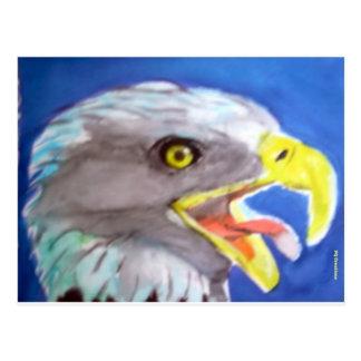 Cachinnating Eagle Post Card