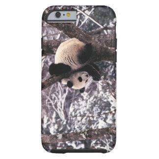 Cachorro de la panda que juega en el árbol funda para iPhone 6 tough