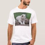 Cachorro de león blanco del bebé 2 playera
