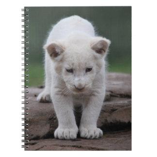 Cachorro de león blanco del bebé libro de apuntes con espiral
