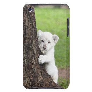 Cachorro de león blanco que oculta detrás de un ár iPod touch Case-Mate cárcasas