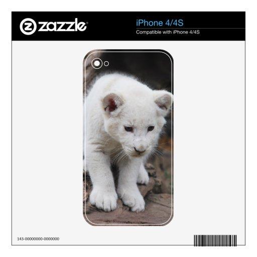 Cachorro de león blanco viejo de seis semanas del  iPhone 4S skin