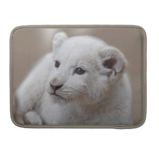 Cachorro de león blanco viejo de seis semanas del fundas para macbook pro