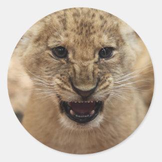 Cachorro de león que gruñe pegatina redonda