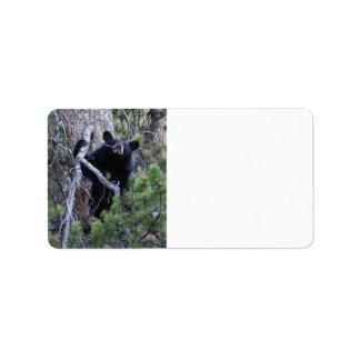 cachorro de oso negro etiquetas de dirección