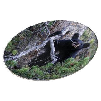 cachorro de oso negro plato de cerámica