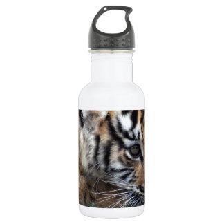 Cachorro de tigre de bebé que se acuesta
