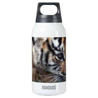 Cachorro de tigre de bebé que se acuesta botella isotérmica de agua