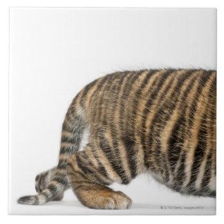 Cachorro de tigre de Sumatran 2 Azulejo Cuadrado Grande