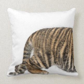 Cachorro de tigre de Sumatran 2 Cojín
