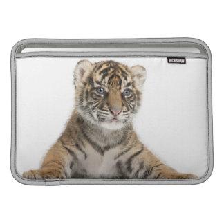 Cachorro de tigre de Sumatran Funda Macbook Air