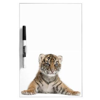 Cachorro de tigre de Sumatran Pizarras Blancas