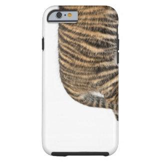 Cachorro de tigre de Sumatran - sumatrae del Funda De iPhone 6 Tough