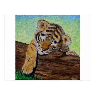 Cachorro de tigre soñoliento postales