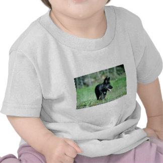 Cachorro gris del Lobo-verano negro-fase Camiseta