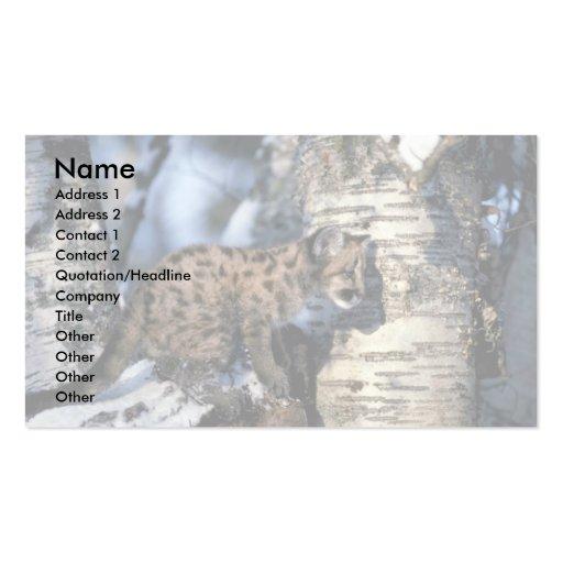 cachorro Puma-joven en árbol nevoso Tarjetas De Visita