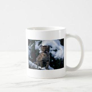 cachorro Puma-joven en árbol nevoso Tazas