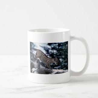 cachorro Puma-joven en árbol nevoso Tazas De Café