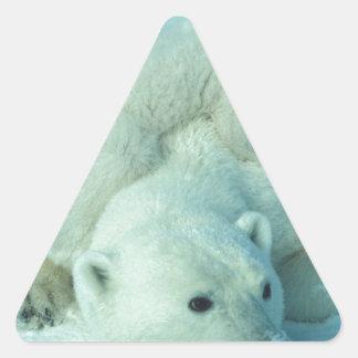 Cachorro y mamá - 2 del oso polar calcomanías de trianguloes personalizadas