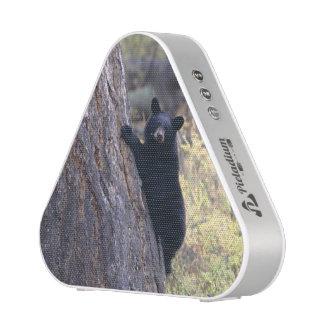 cachorros de oso negro altavoz